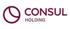 логотип Holding Consul